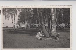 Lietuva, Grybautojai, Apie 1930 M. - Lituanie