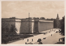 MÜNCHEN Haus Der Deutschen Kunst - Gebäude & Architektur