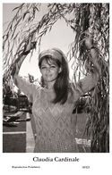CLAUDIA CARDINALE - Film Star Pin Up PHOTO POSTCARD- Publisher Swiftsure 2000 (10/325) - Postales