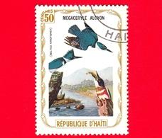 HAITI - Etichetta Fantasia - 1975 - Uccelli - Birds - Oiseaux - Martin Pescatore - Megaceryle Alcyon - 50 - Etichette Di Fantasia