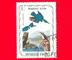 HAITI - Etichetta Fantasia - 1975 - Uccelli - Birds - Oiseaux - Martin Pescatore - Megaceryle Alcyon - 1 - Etichette Di Fantasia