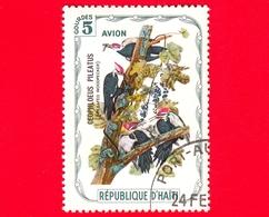 HAITI - Etichetta Fantasia - 1975 - Uccelli - Birds - Oiseaux - Ceophloeus Pileatus - 5 - Aerea - Etichette Di Fantasia