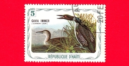 HAITI - Etichetta Fantasia - 1975 - Uccelli - Birds - Oiseaux - Strolaga Maggiore - Gavia Immer - 5 - Etichette Di Fantasia