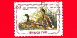 HAITI - Etichetta Fantasia - 1975 - Uccelli - Birds - Oiseaux - Anatre - Anas Platyrhynchos - 50 - Aerea - Etichette Di Fantasia