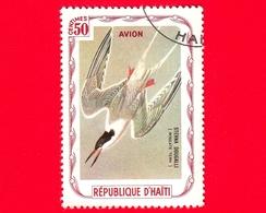 HAITI - Etichetta Fantasia - 1975 - Uccelli - Birds - Oiseaux -  Sterna Dougallii - 50 - Aerea - Etichette Di Fantasia