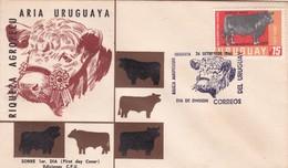 1966 COVER FDC URUGUAY - RIQUEZA AGROPECUARIA URUGUAYA, ABERDEEN AUNGUS - BLEUP - Agriculture