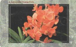 REPUBLICA CHECA. FLORA - ORQUIDEAS. Orchid Ascocenda Duang Porn. C277, 17/03.99. (139) - Flores