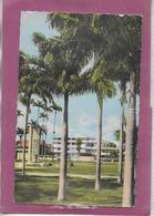CAYENNE .- Clinique Saint-Paul - Cayenne