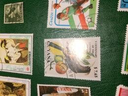 GUYANA UCCELLI - Postzegels