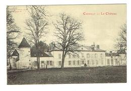 ALLIER 03 CHEMILLY Le Château - France