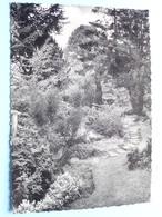 O.L.Vr- Ten DOORN Instituut ( Thill ) > Anno 1974 ( Zie / Voir Photo ) ! - Eeklo