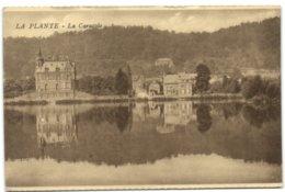 La Plante - La Caracole - Namur