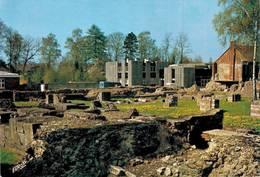 Bavay Site Archeologique Fouilles Et Musée Au Fond  CPM Ou CPSM - Bavay
