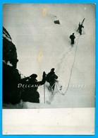 Chamonix 1950 * Catastrophe Avion Malabar Princess, Mort Guide Réné Payot * Photo Presse 13 X 18cm - Places