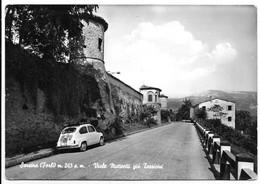 Sarsina (Forlì-Cesena). Viale Matteotti Già Torricini. Auto, Car, Voitures. - Forlì