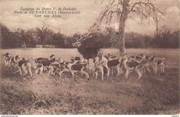 28-SENOCHES-LA FORET CERF AUX ABOIS-N°R2042-B/0051 - France