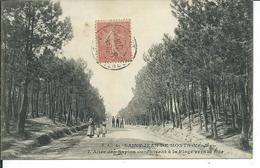 Saint-Jean-de-Monts-L'Allée Des Sapins Conduisant à La Plage Vers La Mer - Saint Jean De Monts