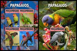 MOZAMBIQUE 2019 - Parrots. M/S + S/S. Official Issue - Perroquets & Tropicaux