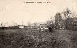Sauvigny - Pâturage Sur La Meuse - Autres Communes