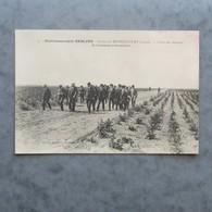 CPA-02-Ferme De MONTESCOURT-Etablissements Sebline-Visite Des Champs De Betteraves Porte-graines - France