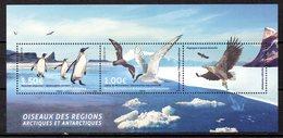 TAAF. BF De 2017. Oiseaux Des Régions Arctiques Et Antarctiques/Manchot/Aigle. - Faune Antarctique
