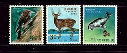 Ryukyu Is 140-42 MNH 1966 Wildlife - Ryukyu Islands