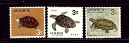 Ryukyu Is 136-38 MNH 1965-66 Turtles - Ryukyu Islands