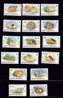Montserrat 681-96 MNH 1988 Sea Shells Definitive Set - Montserrat