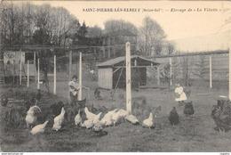76-SAINT PIERRE LES ELBEUF-ELEVAGE DE LA VILLETTE-N°R2047-H/0193 - France