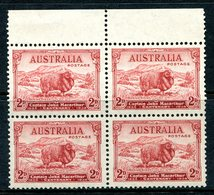 Australia 1934 Death Centenary Of Captain John Macarthur - 2d Carmine-red Block Of 4 MNH (SG 150) - 1913-36 George V : Other Issues