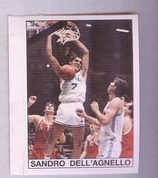 SANDRO DELL'AGNELLO......BASKETBALL...PALLACANESTRO..VOLLEY BALL...BASKET - Trading Cards