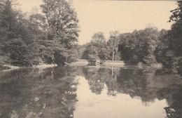 """SMUID ,( LIBIN ), Au Naturel Des Ardennes , Pension De Famille , L'étang Derrière Le """" Tiène """" - Libin"""