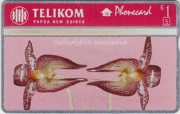 Papua New Guinea Bulbophyllun Macranthum CN.512L25696 Mint - Papouasie-Nouvelle-Guinée