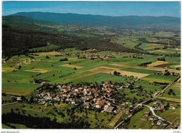 Givrins Und Das Jura-Gebirge, Luftaufnahme - VD Vaud