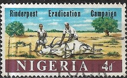 NIGERIA 1966 Rinderpest Eradication Campaign - 4d Tending Sick Animal FU - Nigeria (1961-...)