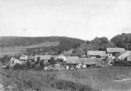 01-TREZILLIEU- SAINTE BLAIZINE - France