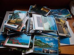 LOT DE 450 CP DES ILES FRANCAISES - GUYANE , MARTINIQUE , GUADELOUPE , LA REUNION - Postales