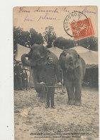 CURLET AVEC SES ELEPHANTS MUSICIENS PROPRIETE DU GRAND CIRQUE PINDER CPA BON ETAT - Cirque