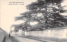 ARBRE Tree Bome Boom Albero árbol - 94 - VILLIERS Sur MARNE : Le CEDRE Avenue De L'Isle - CPA - Val De Marne - Bäume