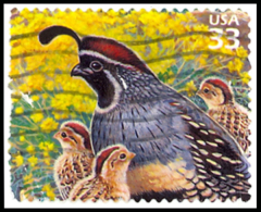 Etats-Unis / United States (Scott No.3293d - Desert De Sonoran / Sonoran Desert) (o) - First Day Covers (FDCs)