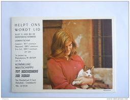 Helpt Ons Wordt Lid Koninklijke Maatschappij Tot Bescherming Der Dieren Gent Belgique Protection Des Animaux Kat Chat - Cats