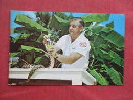 Ross Allen Milking Florida Diamond Back Rattlesnake For Venom     Ref 3430 - Other
