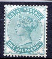 NATAL - (Colonie Britannique) - 1874-80 - N° 28 - 1/2 P. Vert-bleu - (Victoria) - Afrique Du Sud (...-1961)