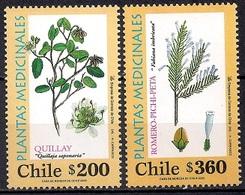 Chile 2000 - MINT - Medicinal Plants - Chili