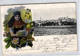 Schleiz.....- Alte Karte  (ke5139   ) Siehe Scan - Deutschland