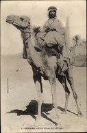 Cp Sahara, Père Blanc En Voyage, Ägypter Auf Einem Kamel - Costumes