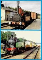 CPM 17 Charente-Maritime (Lot De 2) Train Touristique De La Seudre SAUJON - LA TREMBLADE ** Locomotive Loco à Vapeur - Frankreich