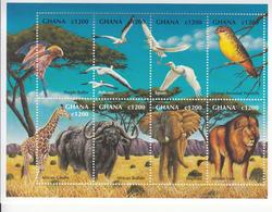 2000 Ghana Wildlife Elephant Lion Giraffe Birds Oiseaux Miniature Sheet Of 8  MNH - Ghana (1957-...)