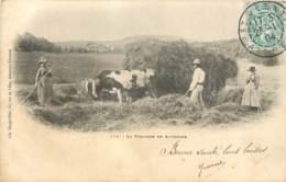 63 - La Fenaison En Auvergne En 1904 (belle Carte) - France