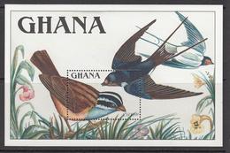 1989 Ghana  Birds Oiseaux Complete Set Of 2 Souvenir Sheets MNH - Ghana (1957-...)